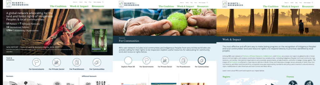 RRI Website Redesign