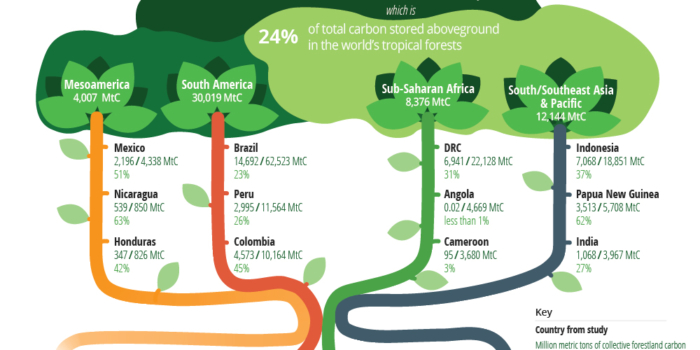 Toward A Global Baseline of Carbon Storage in Collective Lands Infographic