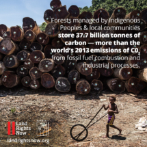 Global-Call-To-Action_carbon_Facebook_RRI